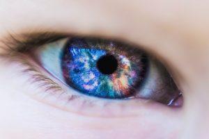 Euphuia conseil réferencement vision